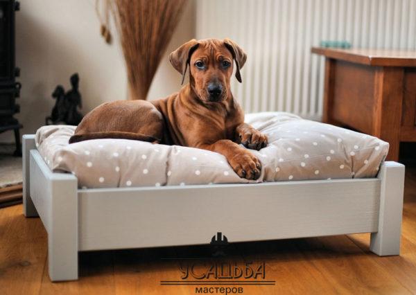 Роскошная кровать для вашего любимца