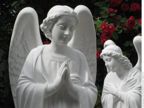 Ангелы с розами