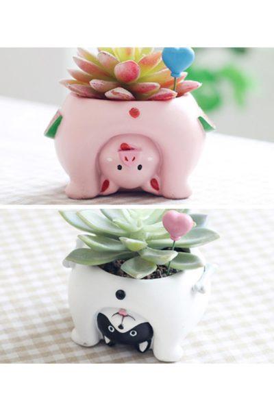 Можете приобрести на выбор цветочный горшок «Попа щенка» или «Попа поросенка».