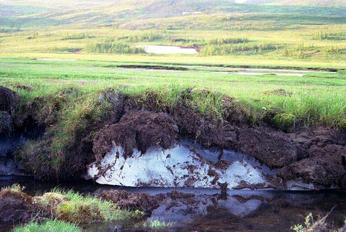 В этом регионе не проблема заглубить канализацию ниже точки промерзания. Всего-то двести метров глубины...